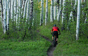 2018 Bike Trail Description 2 Image CTA 33 D