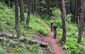 Jackson wyoming mtb with kids featured